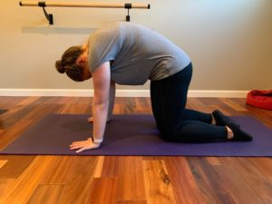 physical therapist approved at home pilates sequence cat cow